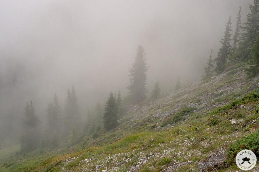 fog_banff_national_park